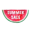 Summer Sale Banner watercolor vector image