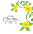 sunflower in a natural floral spring background vector image