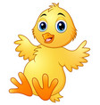 cute baby chicks cartoon vector image vector image