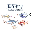 fish logo design template fishing or vector image