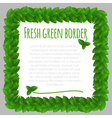 Fresh leaves green frame template vector image vector image