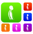 human spine set color collection vector image