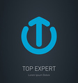 Logo template for the top experts in the field of vector image