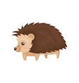 lovely hedgehog prickly animal cartoon character