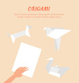 origami works cute paper animals group vector image