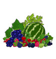 set of fresh summer berries vector image vector image