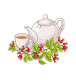 wild rose tea on white background vector image vector image