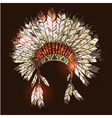 Hand Drawn Native American Indian Headdress vector image