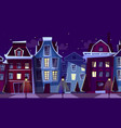 amsterdam night cityscape cartoon vector image vector image
