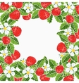 beautiful strawberries frame vector image