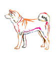 colorful decorative standing portrait of akita inu vector image vector image