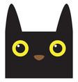 cute halloween cartoon cat avatar