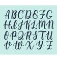 Hand drawn latin calligraphy brush script of vector image vector image