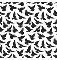 pigeon silhouette pattern vector image vector image