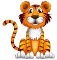 Cartoon Tiger vector image