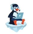 Cute penguin with a laptop vector image vector image