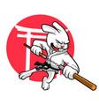double stick rabbit vector image