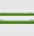 green grass with plants border set isolated vector image