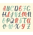 Hand drawn latin calligraphy brush script of vector image