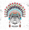 hipster bulldog with indian feather headdress vector image
