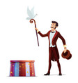 magician or with hat magic wand dove vector image