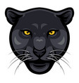 panther face vector image
