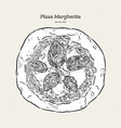 pizza margherita hand draw sketch vector image vector image