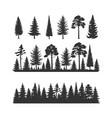 set coniferous trees vector image vector image