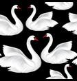 white birds seamless pattern wildlife background vector image