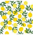 yellow-lemon-set-seamless-pattern vector image vector image
