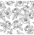 black outline roses vector image