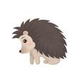 cute edgehog prickly animal cartoon character