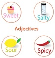English adjectives Basic tastes vector image vector image