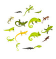 lizard icons set flat style vector image vector image