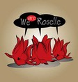 Roselle herb of thailand vector image