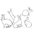 set of hares rabbits painted with a pen hares in vector image