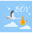 stork newborn boy vector image