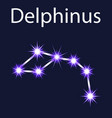 constellation delphinus with stars in the night vector image vector image
