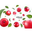 falling red apples isolated on white vector image