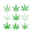Medical marijuana or cannabis icons set vector image