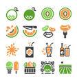 meloncantaloupe icon set vector image