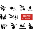 olive icons set with red signboard vector image vector image