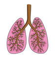lungs doodle drawing of vector image