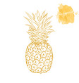 ripe pineapple on a white background hand drawn vector image