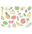 colorful organic fruits set vector image vector image
