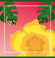 flower hibiscus palms tropical leaves vector image vector image