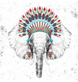hipster elephant with indian feather headdress vector image