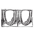 molding architectural feature vintage engraving vector image vector image