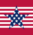 stars and stripes flag united states vector image