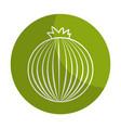 sticker fresh onion organ vegetable food vector image vector image